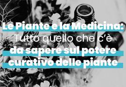 Le Piante e la Medicina: Tutto quello che c'è da sapere sul potere curativo delle piante
